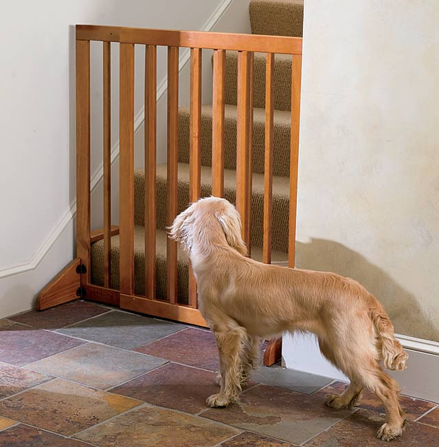 Best ideas about Dog Gate For Stairs . Save or Pin Dog Gate for House Interior Stair Gate Orvis UK Now.