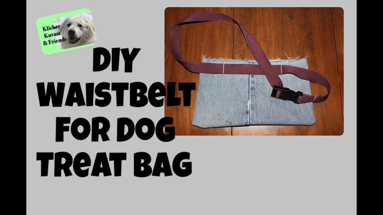 Best ideas about Dog Treat Pouch DIY . Save or Pin DIY Waist Belt For Dog Training Treat Bag Now.