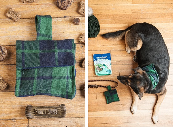 Best ideas about Dog Treat Pouch DIY . Save or Pin DIY Dog Treat Bag Inspired By NaturalBalance Daily Dog Tag Now.