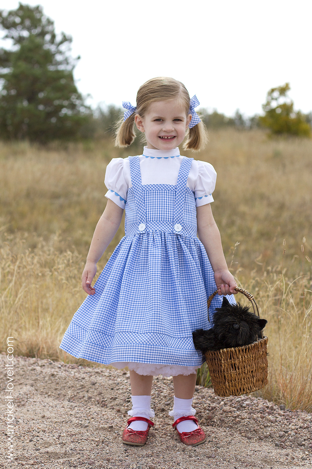 Best ideas about Dorothy Costume DIY . Save or Pin A HOOP SKIRT a sturdy and inexpensive version Now.