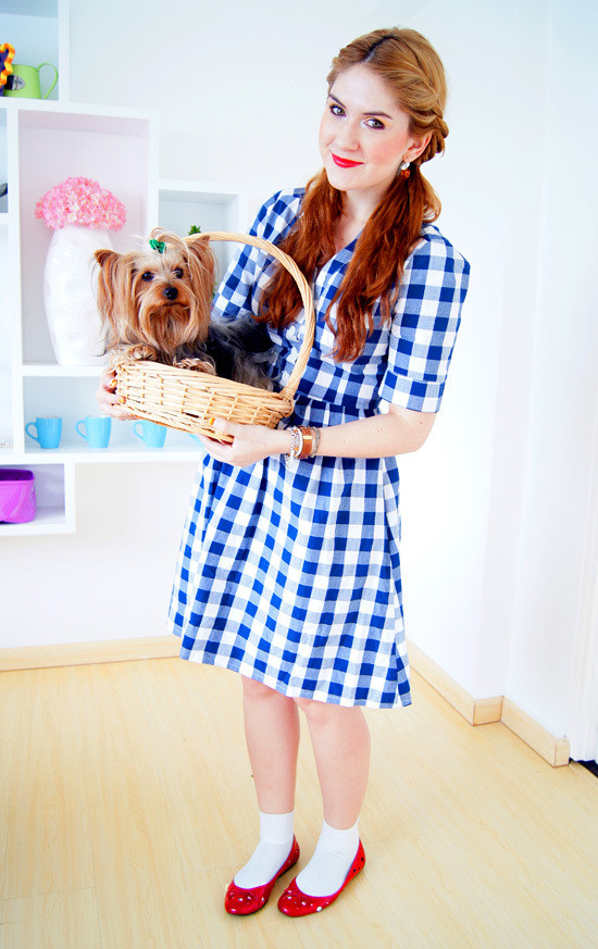 Best ideas about Dorothy Costume DIY . Save or Pin DIY Halloween Costume Ideas for Teen Girls Now.