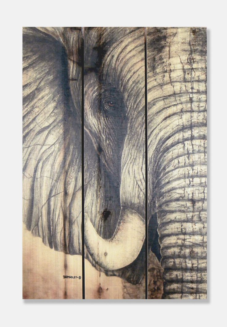 Best ideas about Elephant Wall Art . Save or Pin 25 best ideas about Elephant wall art on Pinterest Now.