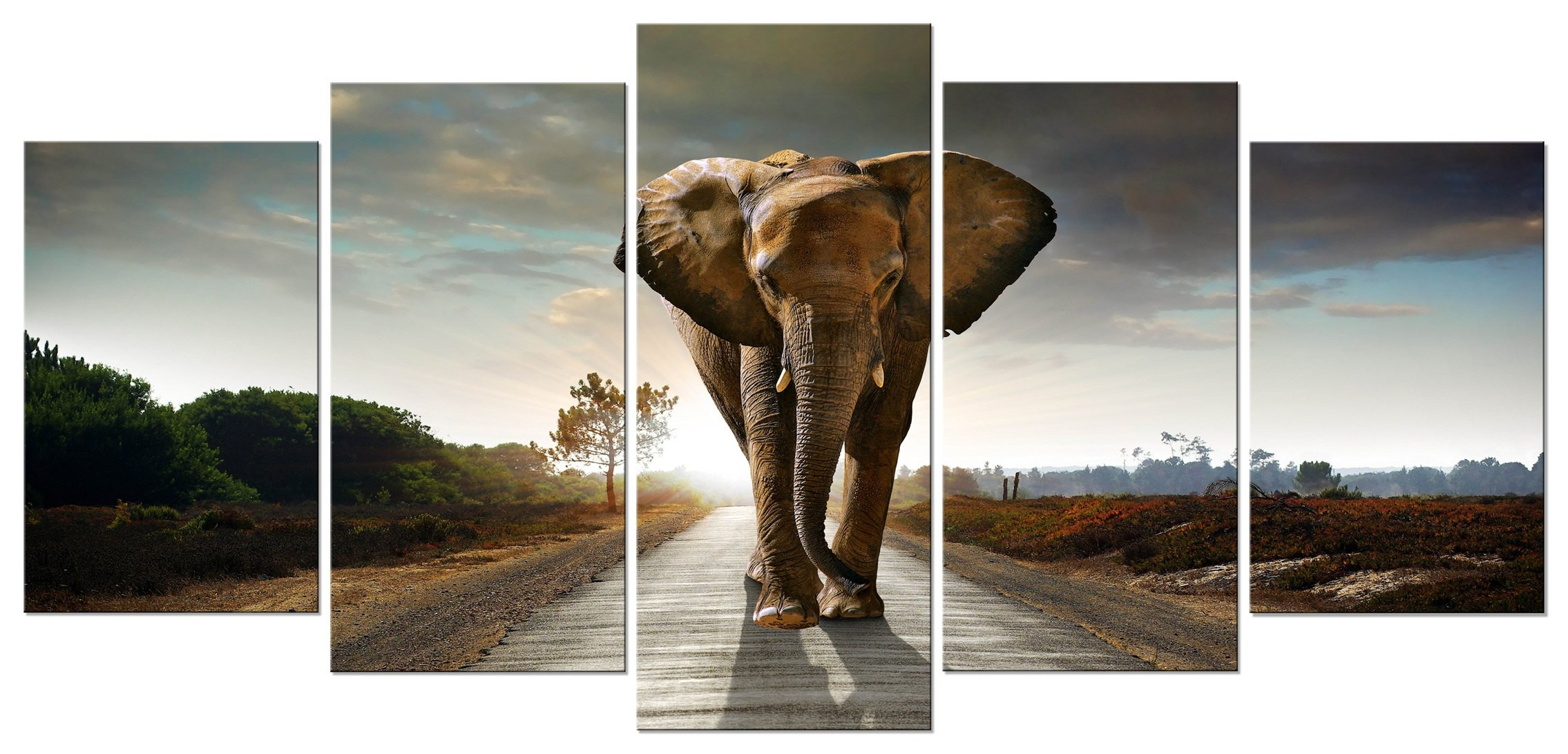 Best ideas about Elephant Wall Art . Save or Pin Elephant Wall Decor Amazon Now.