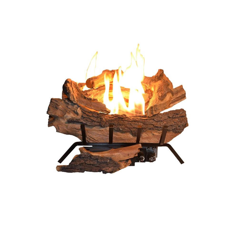 Best ideas about Fireplace Gas Logs . Save or Pin Pleasant Hearth 20 in Electric Crackling Fireplace Logs L Now.