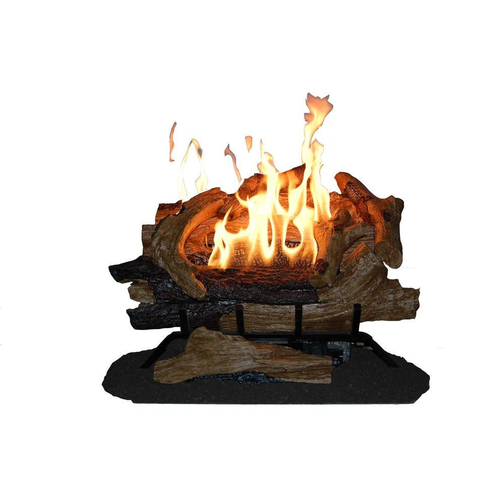 Best ideas about Fireplace Gas Logs . Save or Pin Pro 24 in Vented Natural Gas Fireplace Log Set WAN24N Now.