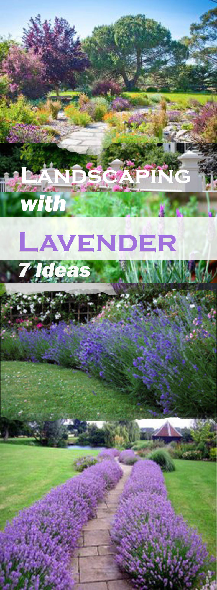 Best ideas about Garden Landscape Ideas . Save or Pin Landscaping with Lavender Now.