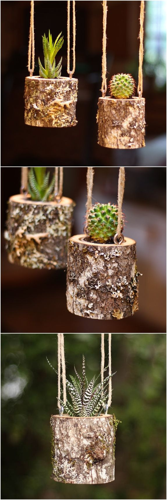 Best ideas about Hanging Succulent Planter . Save or Pin House Warming Gift Planter Hanging Planter Indoor Rustic Now.
