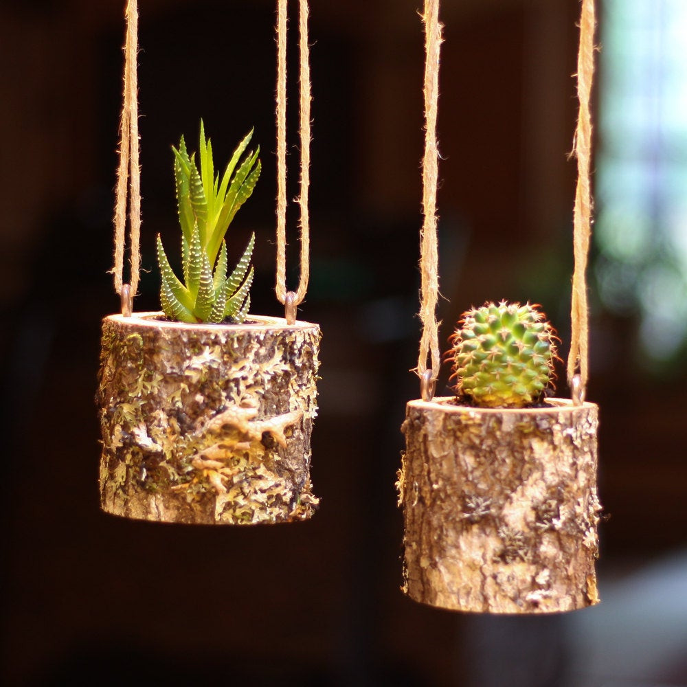 Best ideas about Hanging Succulent Planter . Save or Pin Hanging Planter Indoors Rustic Hanging Succulent Planter Log Now.
