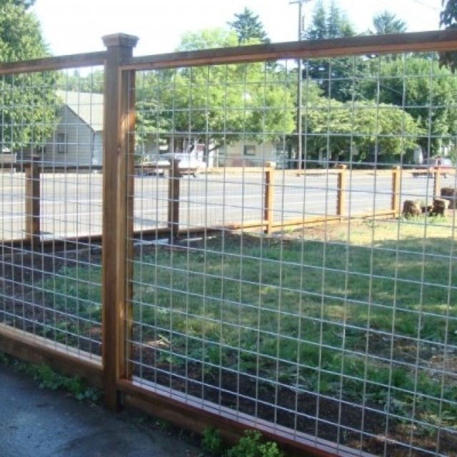 Best ideas about Hog Wire Fence DIY . Save or Pin Pin by Barbara Ramsay on Beth Now.