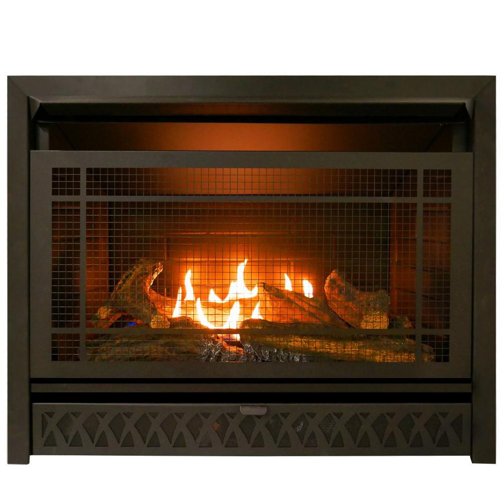 Best ideas about Home Depot Gas Fireplace . Save or Pin Pro Gas Fireplace Insert Duel Fuel Technology – 26 000 Now.