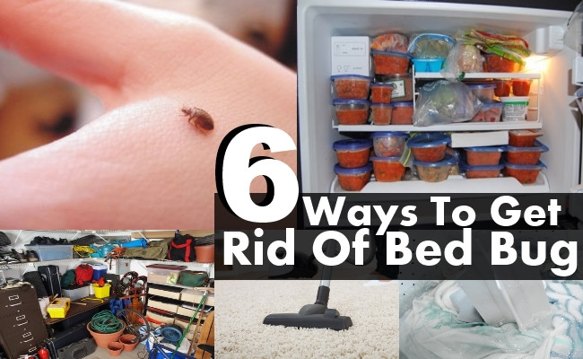Best ideas about How To Get Rid Of Bed Bugs DIY . Save or Pin 6 DIY Ways To Get Rid Bed Bug Now.