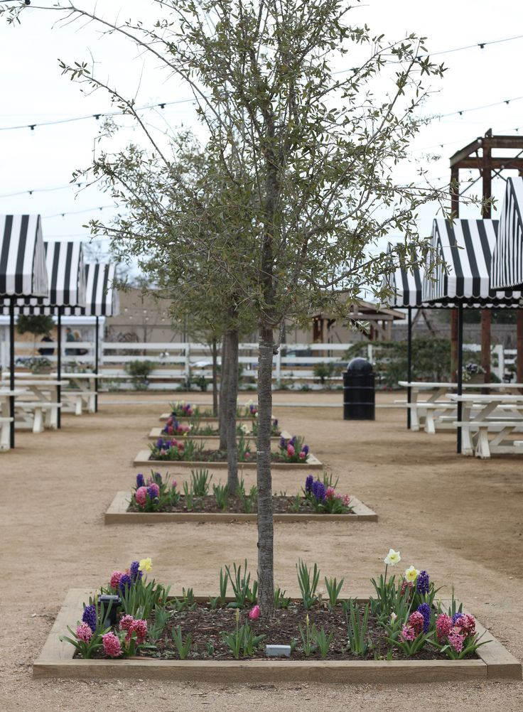 Best ideas about Landscape Supply Waco . Save or Pin 1000 ideas about Landscaping Around Trees on Pinterest Now.