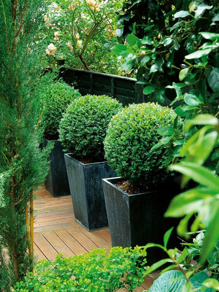 Best ideas about Large Outdoor Planters . Save or Pin Best 25 garden pots ideas on Pinterest Now.
