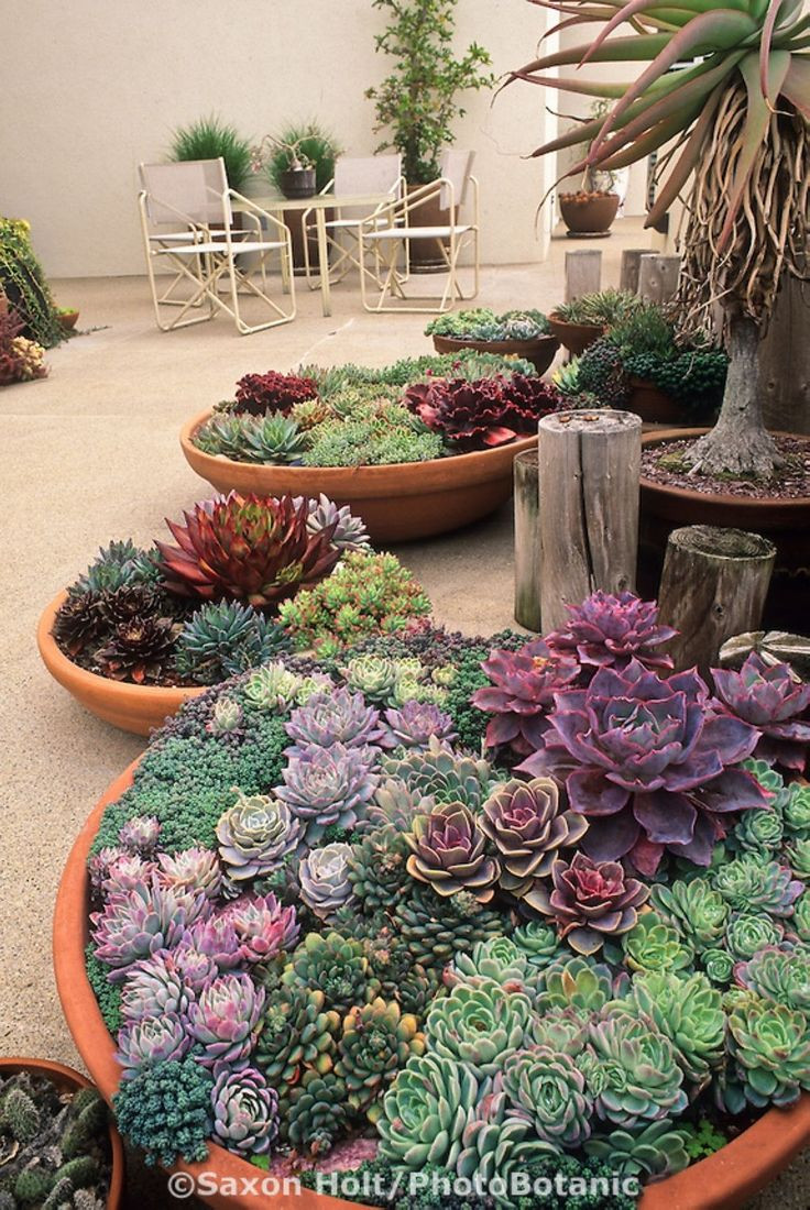 Best ideas about Large Outdoor Planters . Save or Pin Best 25 outdoor planters ideas on Pinterest Now.