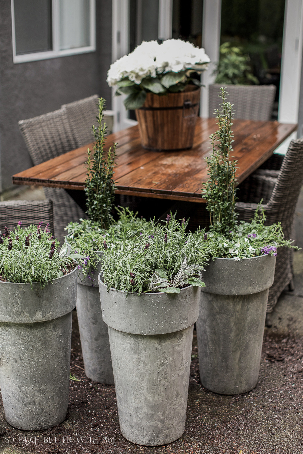 Best ideas about Large Outdoor Planters . Save or Pin The Best Tip for Filling Outdoor Planters Now.