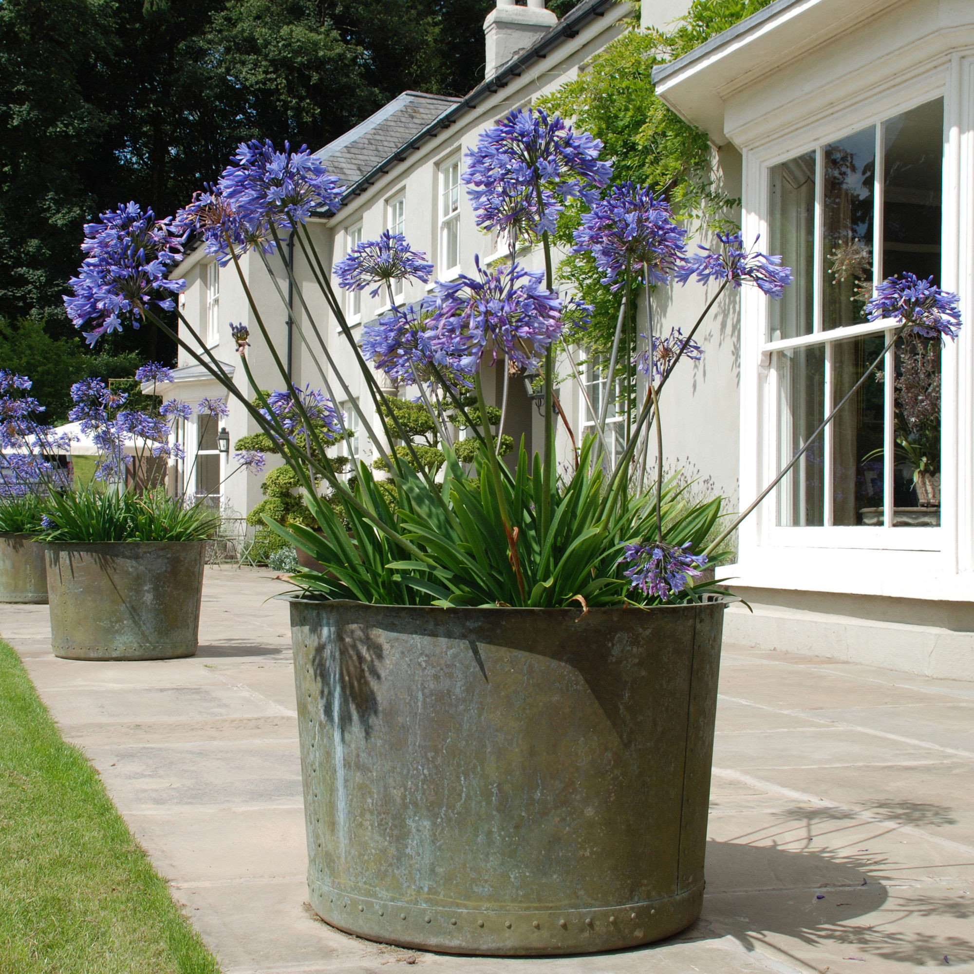 Best ideas about Large Outdoor Planters . Save or Pin The Circular Copper Garden Planter Architectural Now.