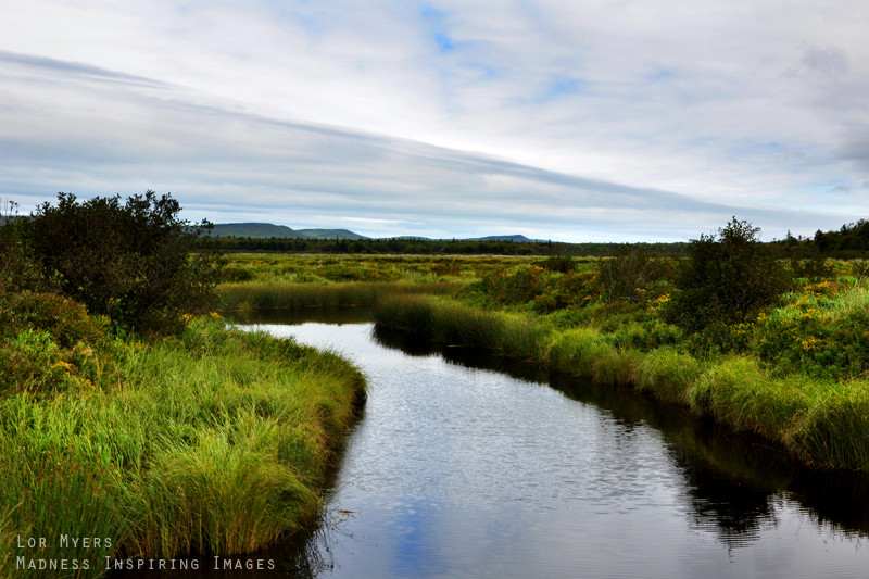 Best ideas about Nova Scotia Landscape . Save or Pin Nova Scotia Landscape 01 by MeetMeAtTheLake2Nite on DeviantArt Now.