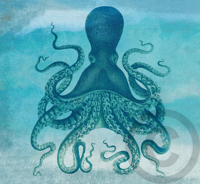 Best ideas about Octopus Wall Art . Save or Pin Digital Octopus Costal Original Wall Art Nautical Beach Decor Now.