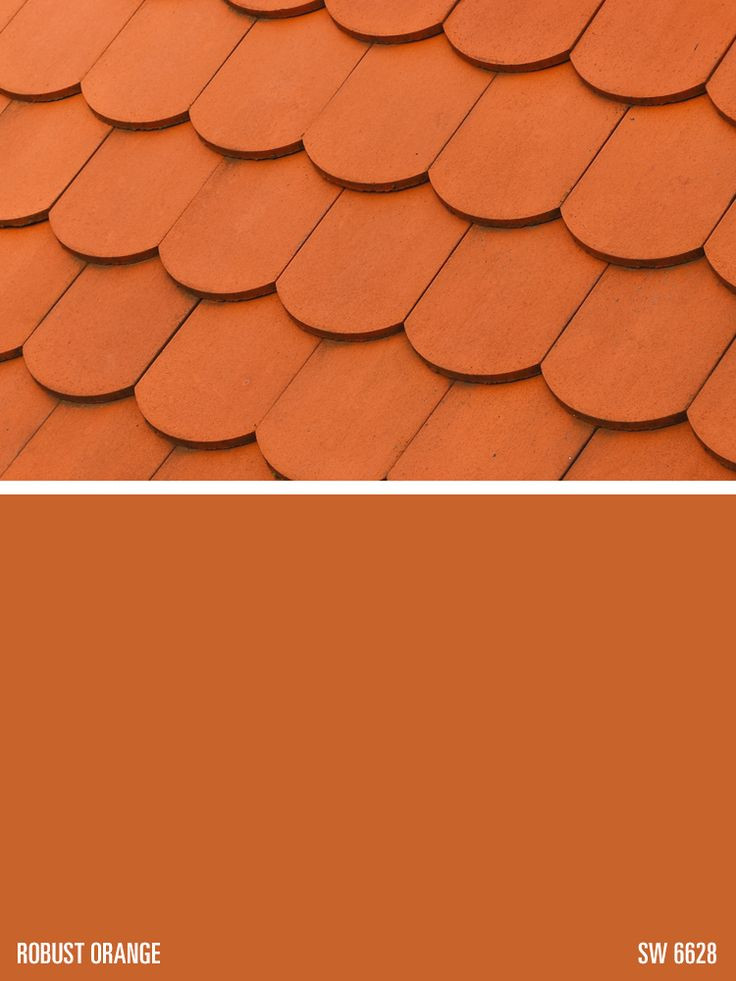 Best ideas about Orange Paint Colors . Save or Pin 60 best All About Orange Orange Paint Colors images on Now.