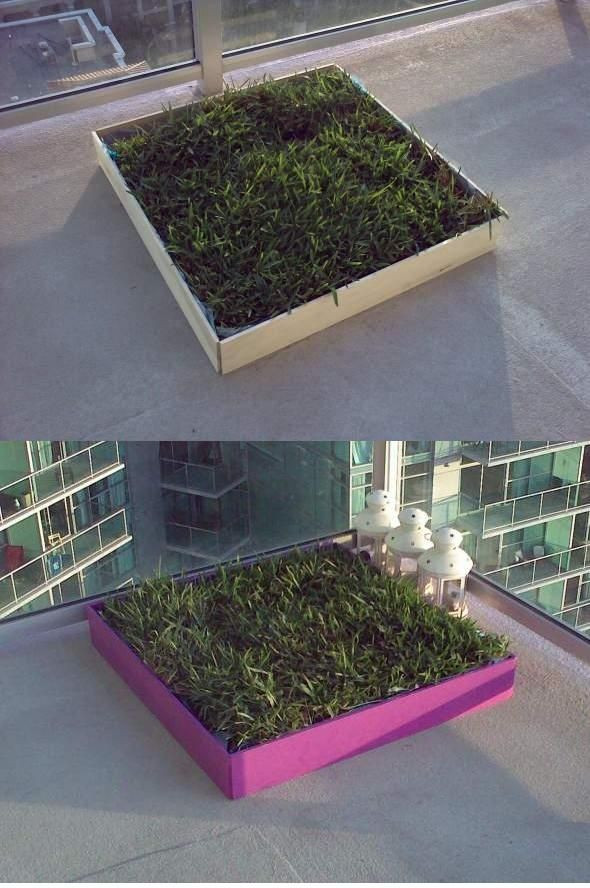 Best ideas about Patio Dog Potty DIY . Save or Pin Doggie Digs DIY dog potty patch with REAL grass Great Now.