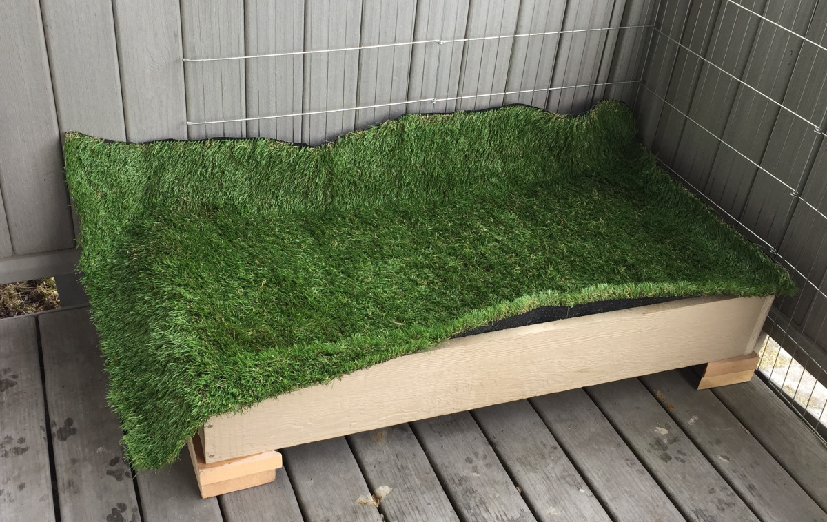 Best ideas about Patio Dog Potty DIY . Save or Pin DIY Potty Box Tutorial – Bully on a Bud Now.