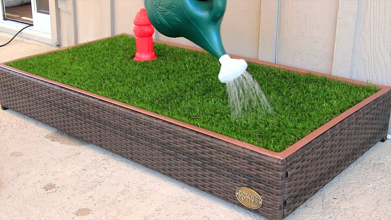 Best ideas about Patio Dog Potty DIY . Save or Pin Porch Potty is Amazing First Automated Dog Litter Box Now.