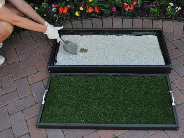 Best ideas about Patio Dog Potty DIY . Save or Pin Pet Patio Potty FAQ Doggy Solutions Now.