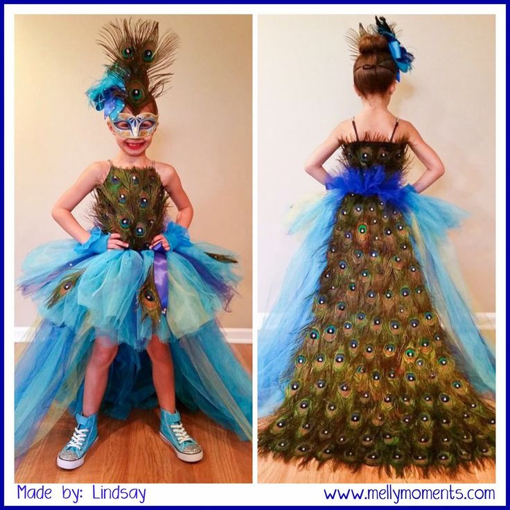 Best ideas about Peacock Costume DIY Kids . Save or Pin Best 25 Peacock costume ideas on Pinterest Now.