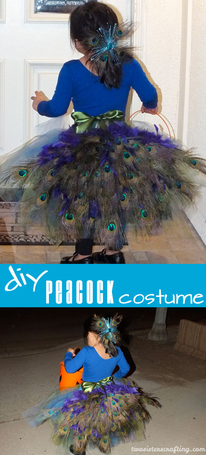 Best ideas about Peacock Costume DIY Kids . Save or Pin DIY Peacock Costume Two Sisters Now.