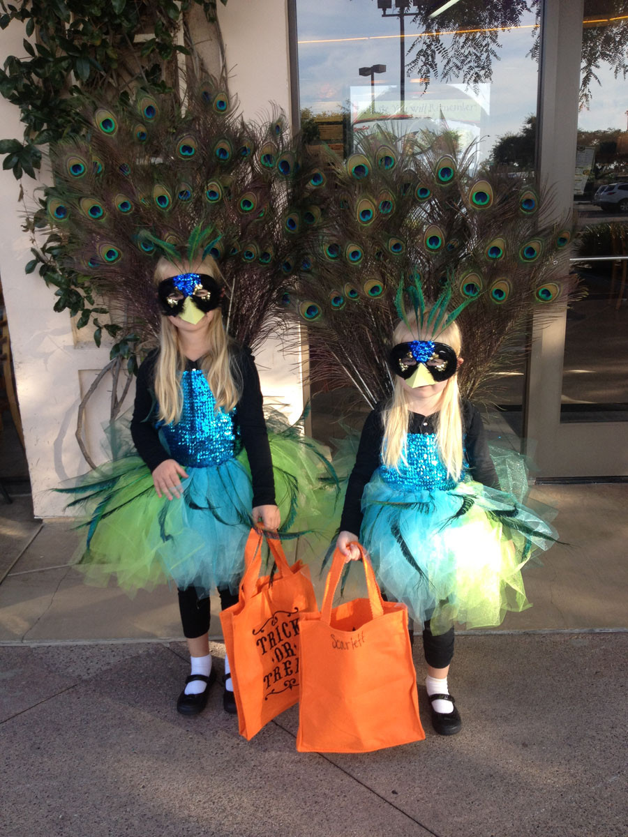 Best ideas about Peacock Costume DIY Kids . Save or Pin Kids Peacock Halloween Costume – Rustic Red Fence Now.