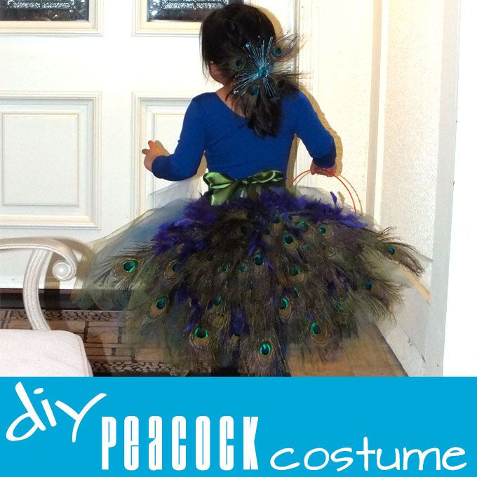 Best ideas about Peacock Costume DIY Kids . Save or Pin DIY Peacock Costume Now.