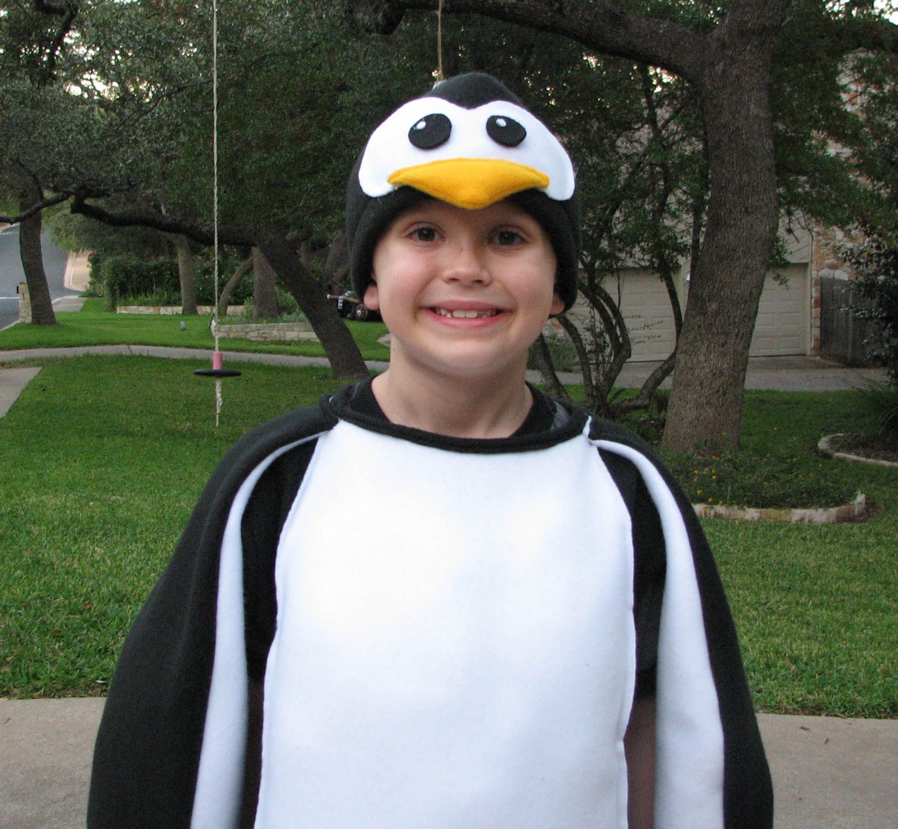 Top 20 Penguin Costumes Diy Best Collections Ever Home