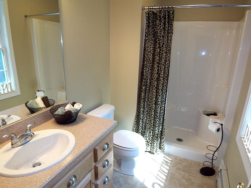 Best ideas about Pictures For Bathroom . Save or Pin Surviving Staged Bathrooms Now.
