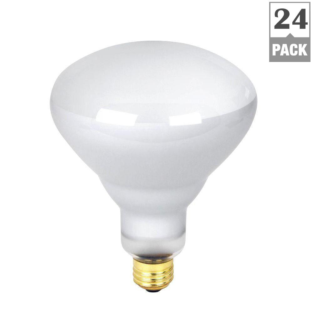 Best ideas about Pool Light Bulb . Save or Pin Feit Electric 300 Watt Soft White 2700K R40 Dimmable Now.