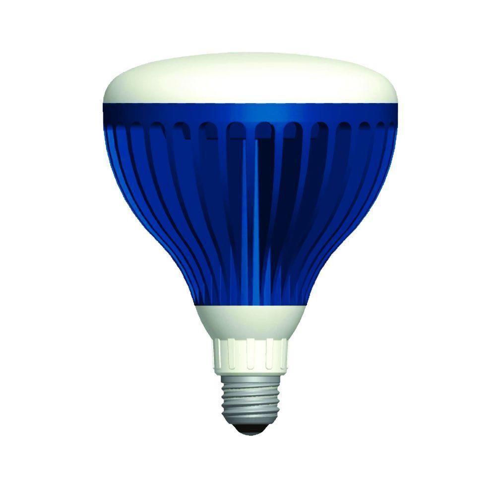 Best ideas about Pool Light Bulb . Save or Pin Aqua Brite 22 Watt Pure White 120 Volt LED Pool Light Bulb Now.
