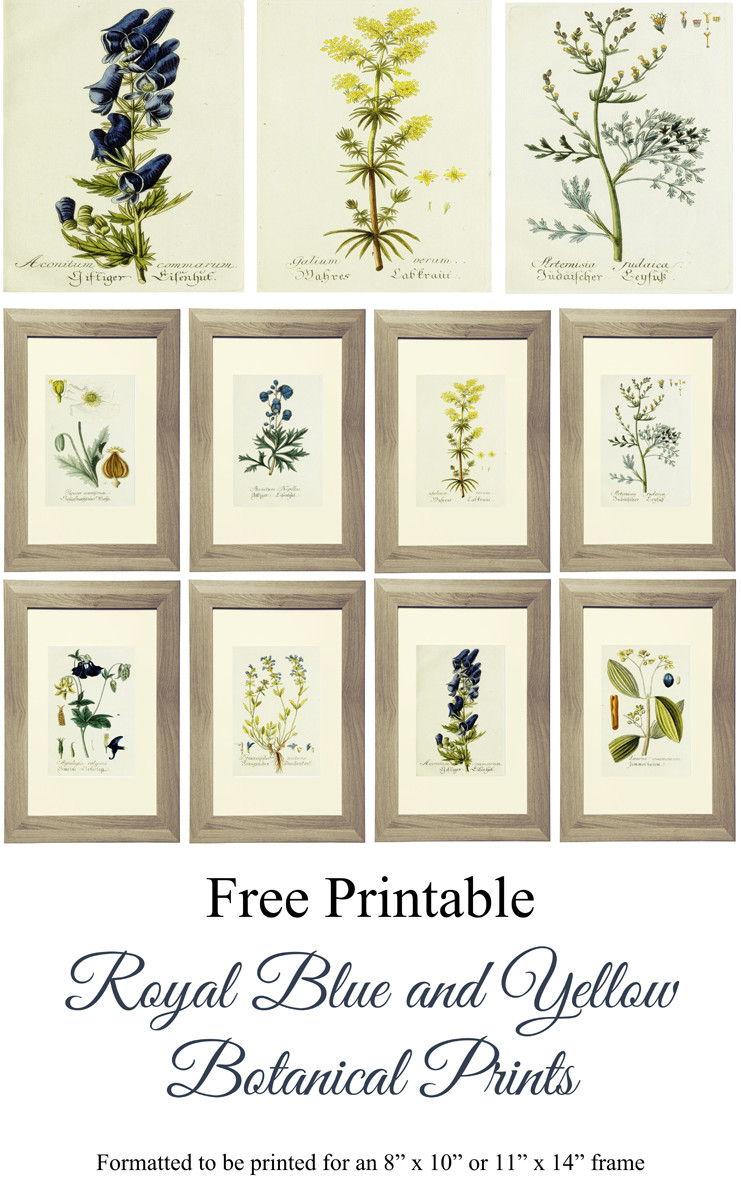 Best ideas about Printable Wall Art . Save or Pin Free Printable Royal Blue and Yellow Botanical Art Now.