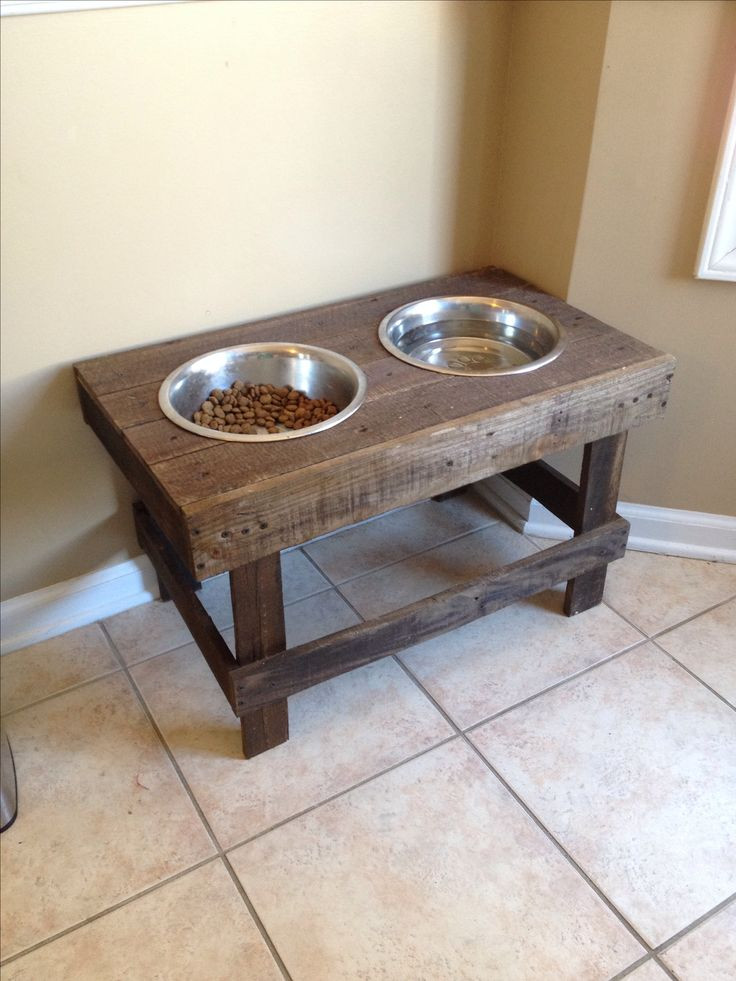 Best ideas about Raised Dog Bowls DIY . Save or Pin 25 best ideas about Raised Dog Bowls on Pinterest Now.