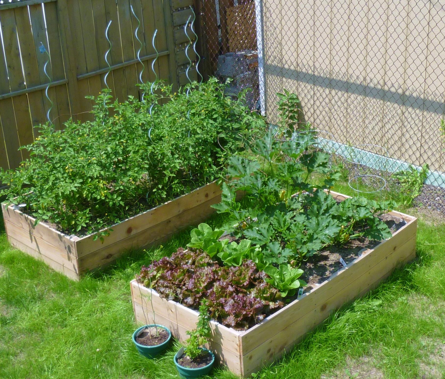 Best ideas about Raised Garden Planters . Save or Pin Ana White Now.