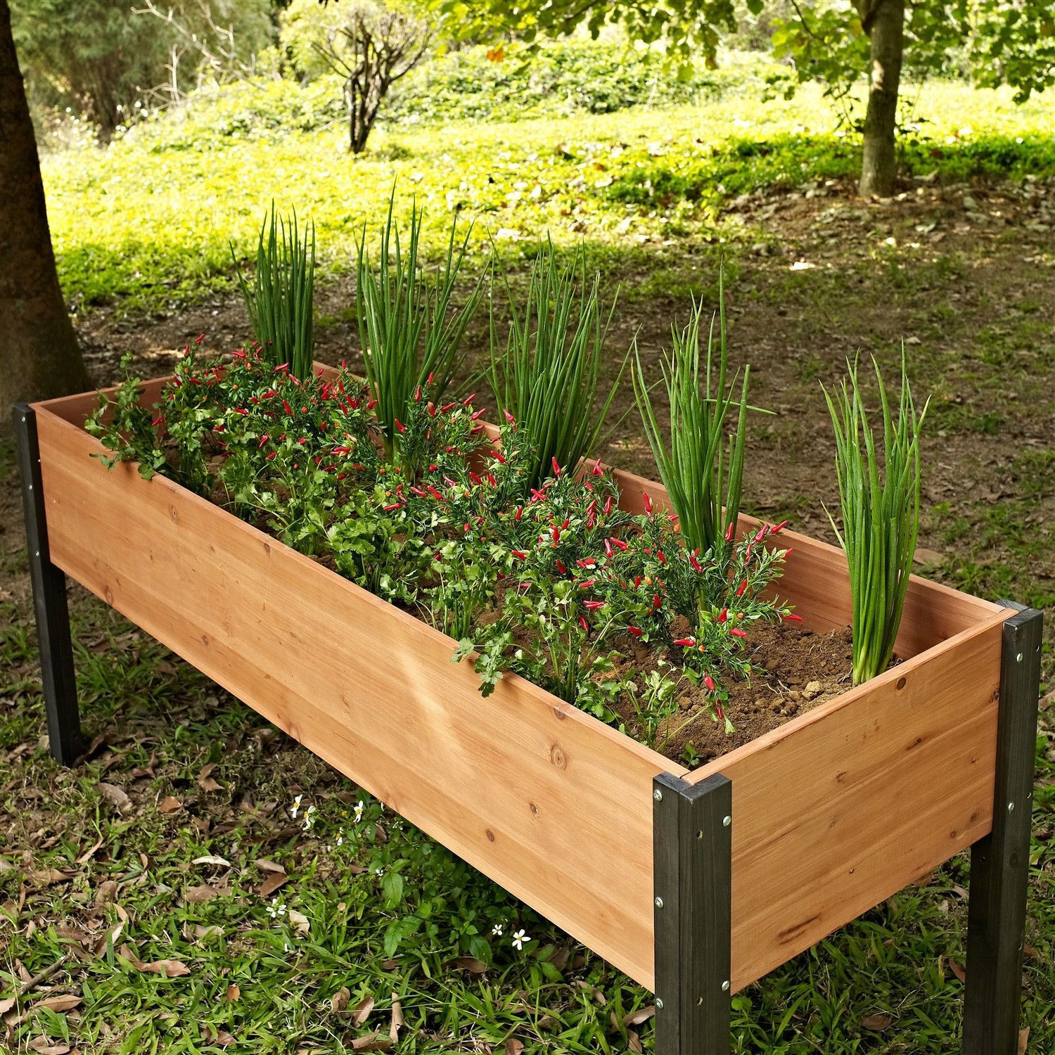Best ideas about Raised Garden Planters . Save or Pin Elevated Outdoor Raised Garden Bed Planter Box 70 x 24 x Now.