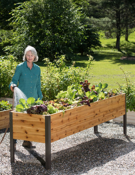 Best ideas about Raised Garden Planters . Save or Pin Planter Boxes Elevated Cedar Planter Box Now.