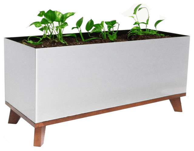 Best ideas about Rectangular Indoor Planter . Save or Pin Madeira Rectangle Planter Contemporary Indoor Pots And Now.