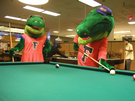 Best ideas about Reitz Union Game Room . Save or Pin Reitz Union Game Room Gainesville FL Now.