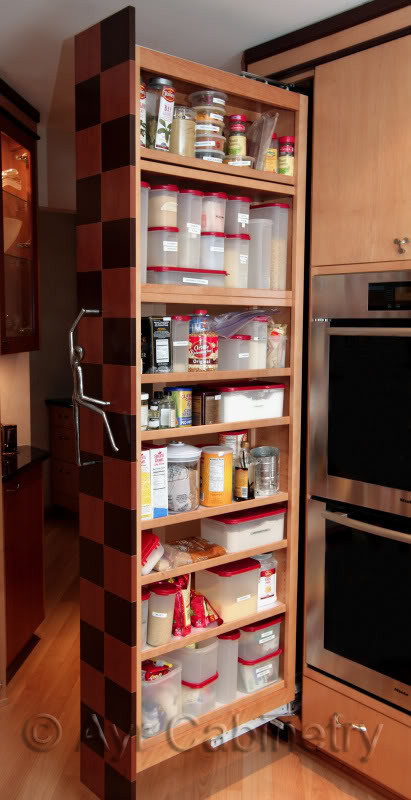 Best ideas about Roll Out Pantry . Save or Pin Modern and Classic Pull out Pantry Design Now.