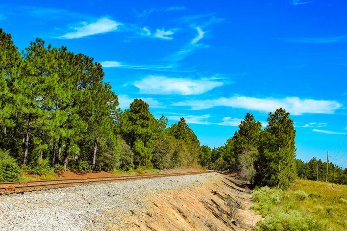 Best ideas about South Carolina Landscape . Save or Pin South Carolina Landscape ViewBug Now.