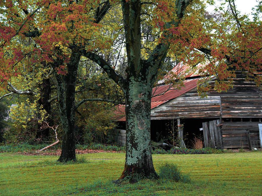 Best ideas about South Carolina Landscape . Save or Pin Rural Barn Fall South Carolina Landscape graph by Now.