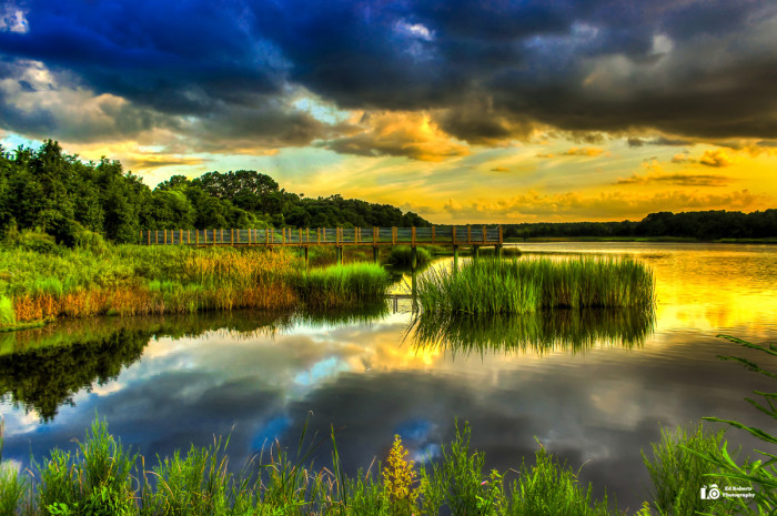 Best ideas about South Carolina Landscape . Save or Pin 25 Mind Blowing South Carolina graphs Now.