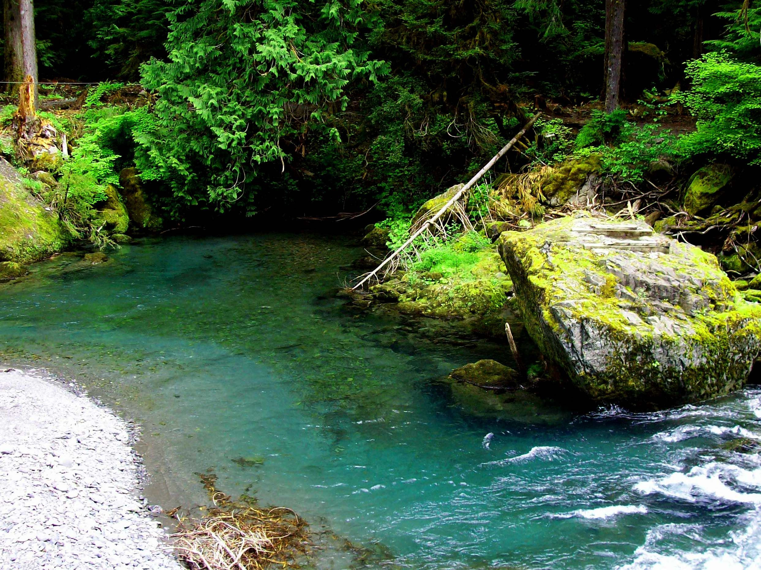 Best ideas about Staircase Olympic National Park . Save or Pin Olympic National Park Skokomish River Staircase Now.