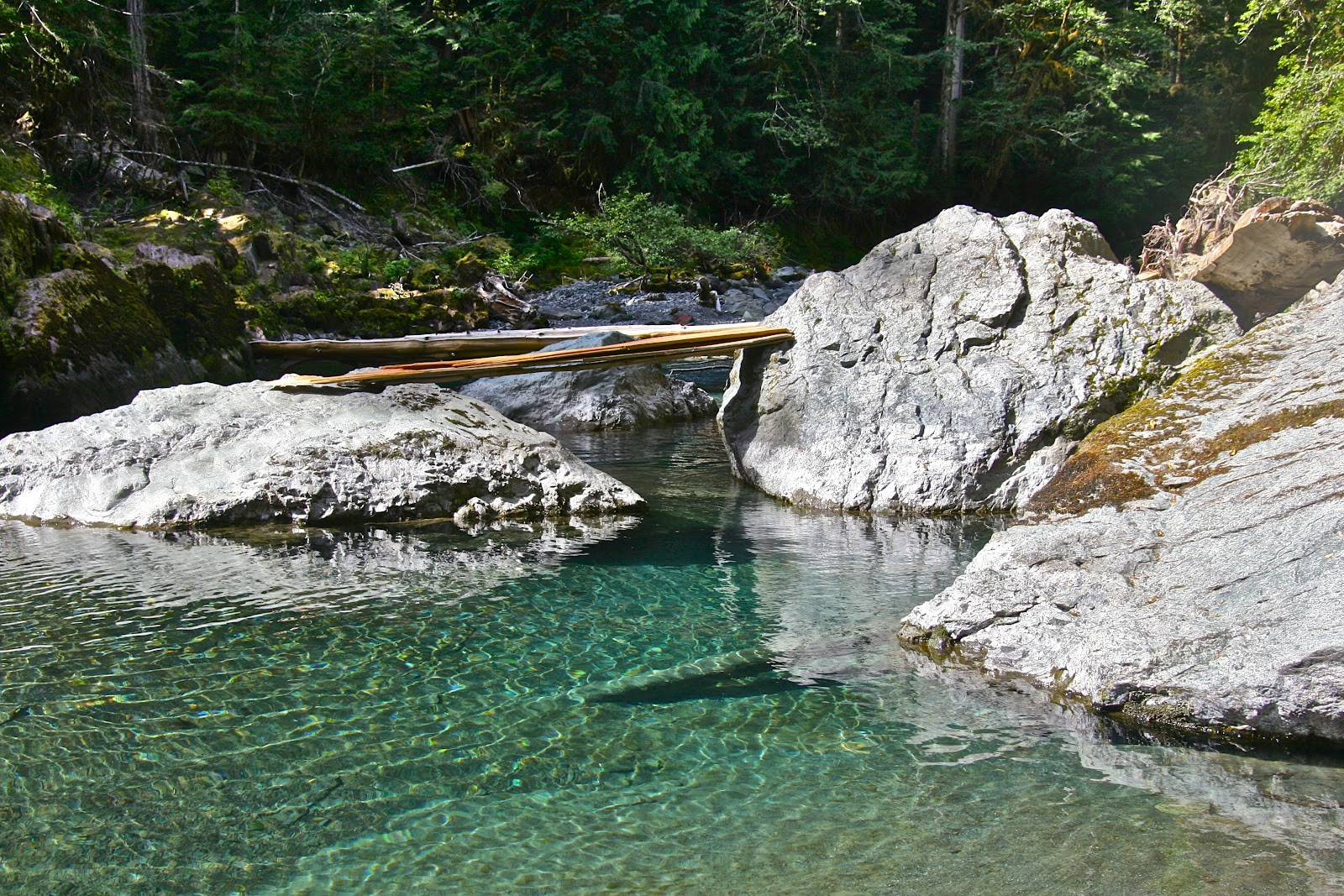 Best ideas about Staircase Olympic National Park . Save or Pin Olympic Peninsula Hikes Guides and Updates Staircase Now.