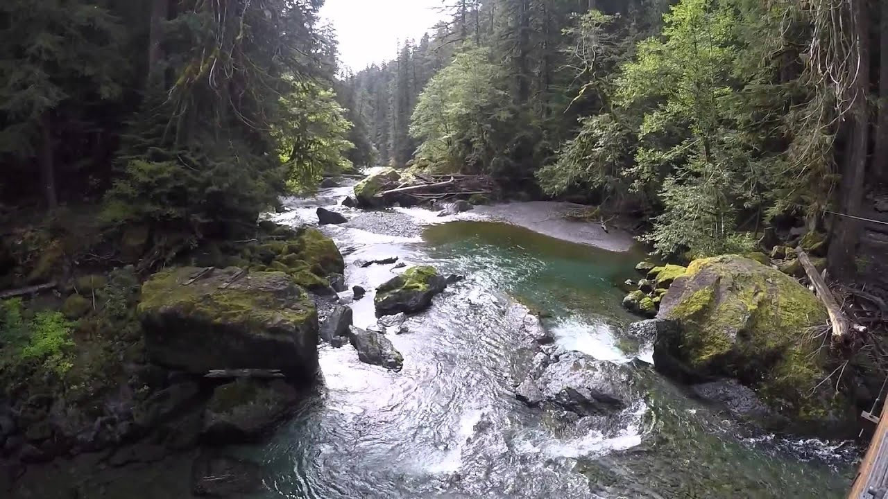 Best ideas about Staircase Olympic National Park . Save or Pin Staircase rapids trail Olympic National Park Now.