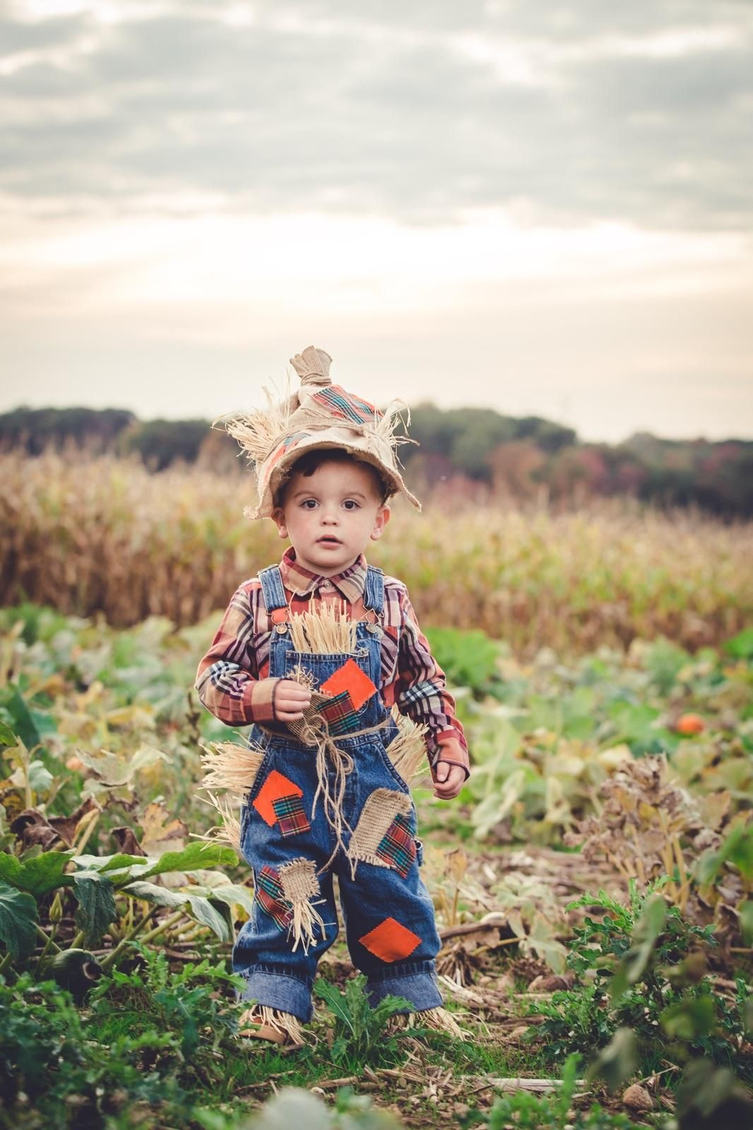 Best ideas about Toddler Scarecrow Costume DIY . Save or Pin Toddler Boy DIY Scarecrow Costume Now.